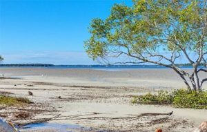Weeroona Association - Accommodation - Tin Can Bay Shoreline